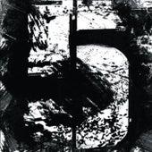 5 de Arraigo