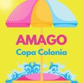 Copa Colonia de Amago