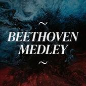 "Beethoven Medley: Piano Sonata, Op. 13, No. 8: I. Grave - Allegro di molto e con brio  / ""Für Elise"", WoO 59 / Symphony No. 5, Op. 67: I. Allegro con brio / Symphony No. 7, Op. 92: II. Allegretto / Symphony No. 9, Op. 125: IV. Presto - Allegro assai de Duo Blanc"