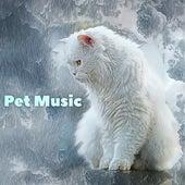 Pet Music by Calm Pets Music Academy