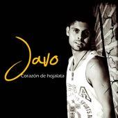 Corazón de hojalata by Javo