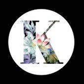 Voices (PV Nova Remix) de A-Trak