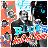 Blues Hall Of Fame de Various Artists