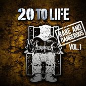 20 To Life: Volume 1 de Various Artists