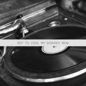 Got To Cool My Doggies Now de Various Artists