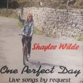 One Perfect Day de Shaylee Wilde