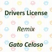 Drivers License (Remix) by Gato Celoso