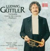 Telemann, Fasch, Hertel, Baer, Sachsen-Weimar & Molter: Ludwig Güttler by Various Artists