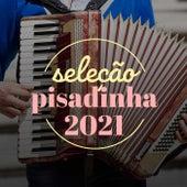 Seleção Pisadinha 2021 de Various Artists