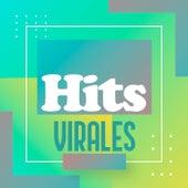 Hits Virales von Various Artists