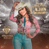 Puras Buenas del Cajón (En Vivo) by Alejandra Rojas