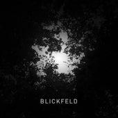 Blickfeld von Wolfgang Müller