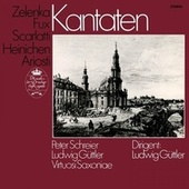 Zelenka, Ariosti, Scarlatti, Heinichen & Fux: Cantatas von Various Artists