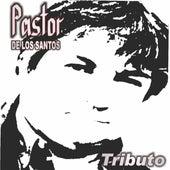 Tributo de Pastor de los Santos