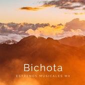 Bichota (Cover) fra Estrenos Musicales MX