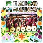 México Mágico by Mariachi Vargas de Tecalitlan