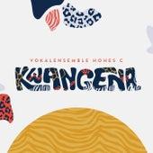 Kwangena by Vokalensemble Hohes C