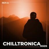 Chilltronica 009 von Various Artists