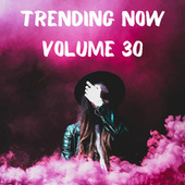 Trending Now Volume 30 by Various Artists