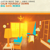 Calm Yourself Down (Big Data Remix) de Justin Wade Tam