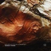 Hoodrat / Stronk (Original Mix) by Volatile Cycle