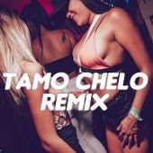 Tamo Chelo (Remix) by DJ Alex