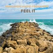 Feel It by Hernando Mario Fernandez