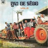 Vol 05 Coletânea - 1971 von Pau de Sebo