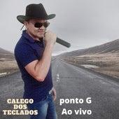 Ponto G (Ao vivo) de Galego dos Teclados
