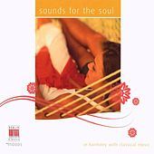 Mozart, Brahms, Chopin, Cimarosa, Ravel, Beethoven, Vivaldi, Haydn & Telemann: Sounds for the soul by Various Artists