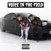 Voice In The Field de Lilnutron