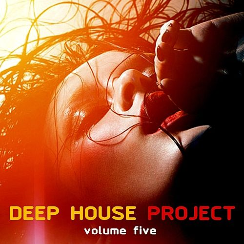 Deep House Project, Vol. 5 by Various Artists