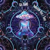 Goa Island: Progressive House & Trance de Various Artists