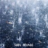 Rain Sounds von Nature Chillout