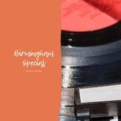 Birmingham Special von Various Artists