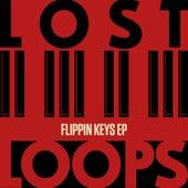 Flippin Keys EP by Lost Loops