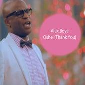 Oshe (Thankyou) - Single by Alex Boye