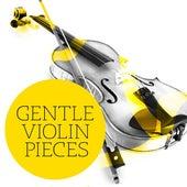 Gentle Violin Pieces de Various Artists