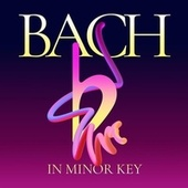 Bach in Minor Key de Various Artists