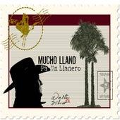 Mucho Llano Pa Un Llanerio de Walter Silva