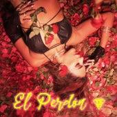 El Perdon by Tefi