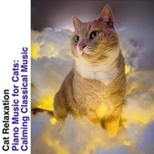 Piano Music for Cats: Calming Classical Music de Cat Relaxation