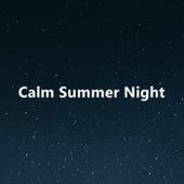 Calm Summer Night van Various Artists