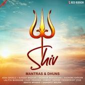 Shiv Mantras & Dhuns by Sumeet Tappoo