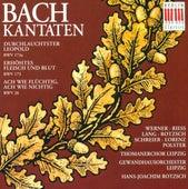 Johann Sebastian Bach: Cantatas - BWV 26, 173, 173a (Rotzsch) von Hans-Joachim Rotzsch