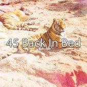 45 Back In Bed von Rockabye Lullaby