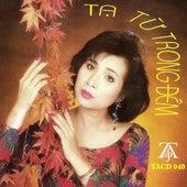 Ta Tu Trong Dem de Various Artists