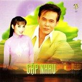 Gap Nhau de Various Artists