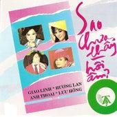 Sao Chua Thay Hoi Am de Various Artists