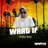 What If (Symphony Riddim) de Shatta Wale